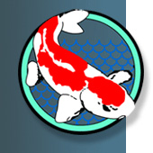 Miracle Koi Food,  only Koi Food guaranteed to make  Koi grow, enhance koi color, or money back.